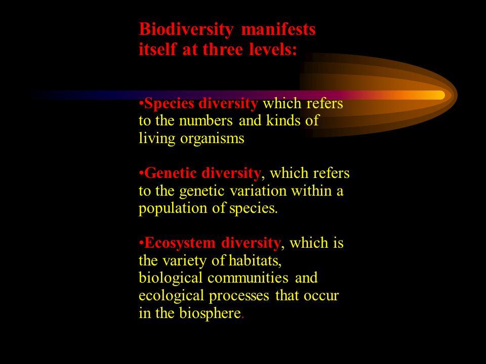 Biodiversity manifests itself at three levels: