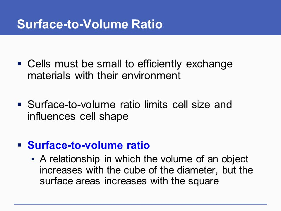 what is the relationship of cell size and surface to volume ratio