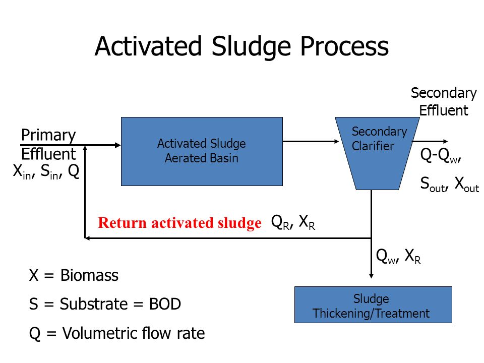 activated sludge process Description a practical, hands-on guide to using the microscope to analyze activated sludge in wastewater treatment the microscope provides the wastewater treatment plant operator with a special tool for process control and troubleshooting of the activated sludge process.