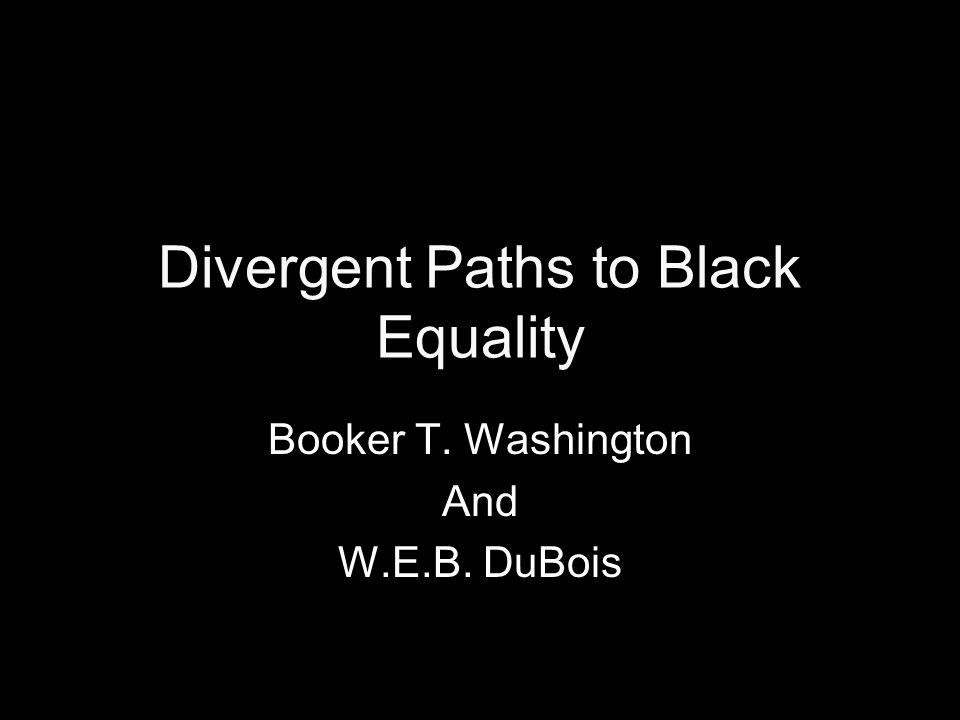 turner thesis racism