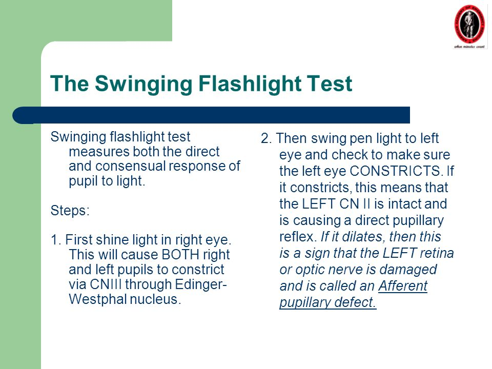 swinger dingolfing swinger test