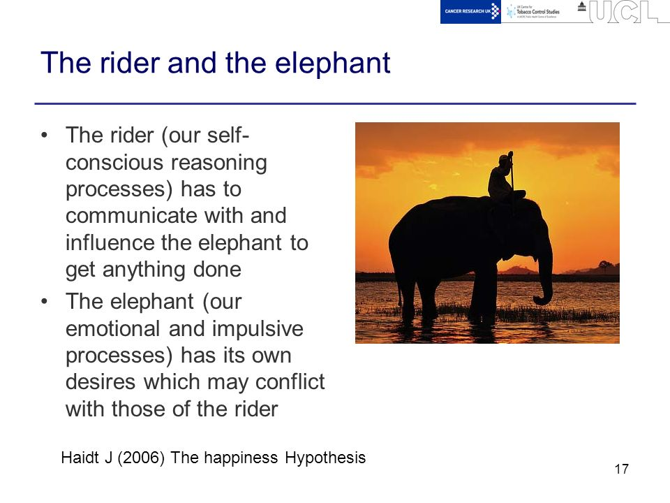 the elephant and the rider pdf