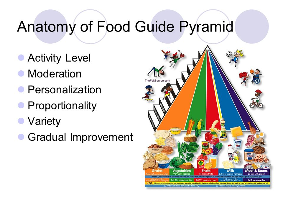 a food guide pyramid The food guide pyramid meg sundseth may 2002 so what is this food pyramid (click on the button that you think fits best) an egyptian refrigerator.