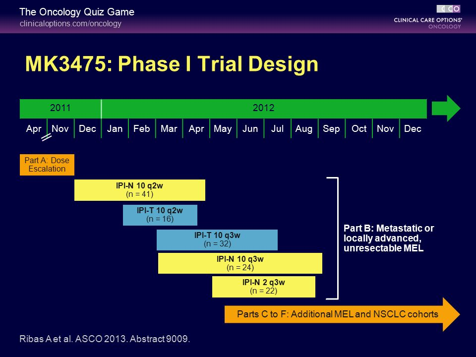 mastering the latest developments in immunotherapy  nsclc