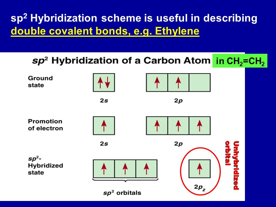Bond Order Of Lithium Is