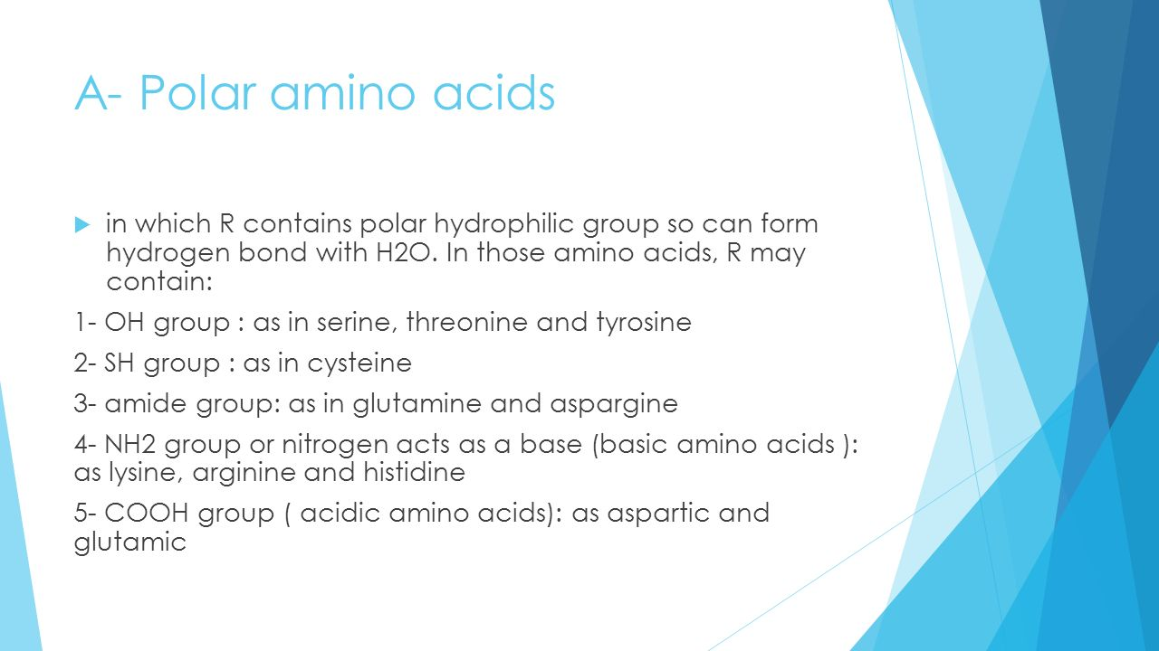 AMINO ACIDS and PROTEIN - ppt video online download