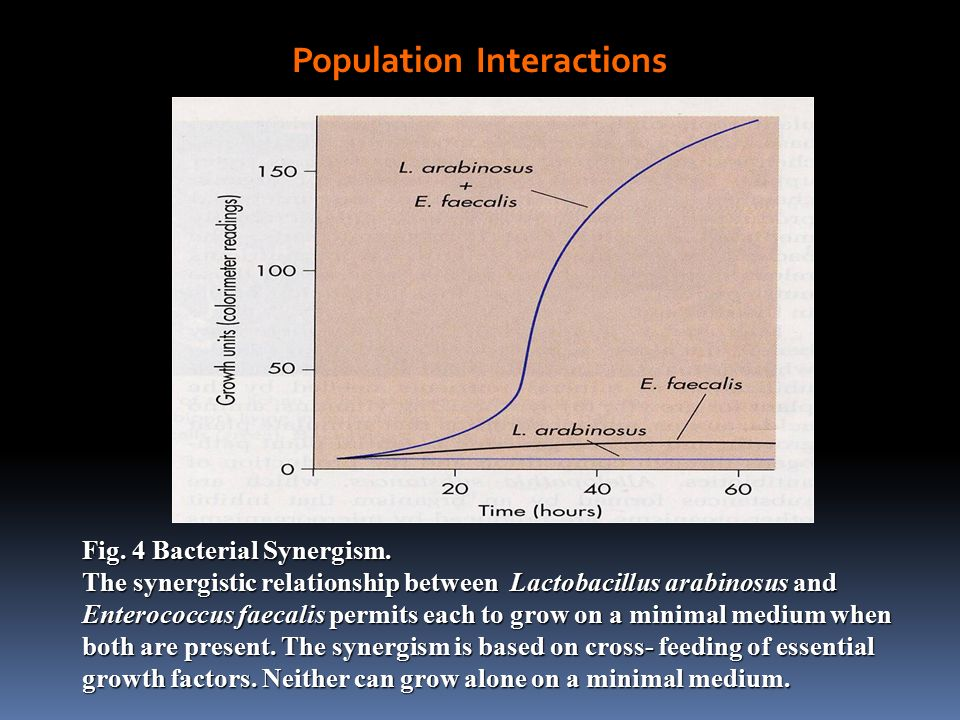 relationship between population growth and food supply