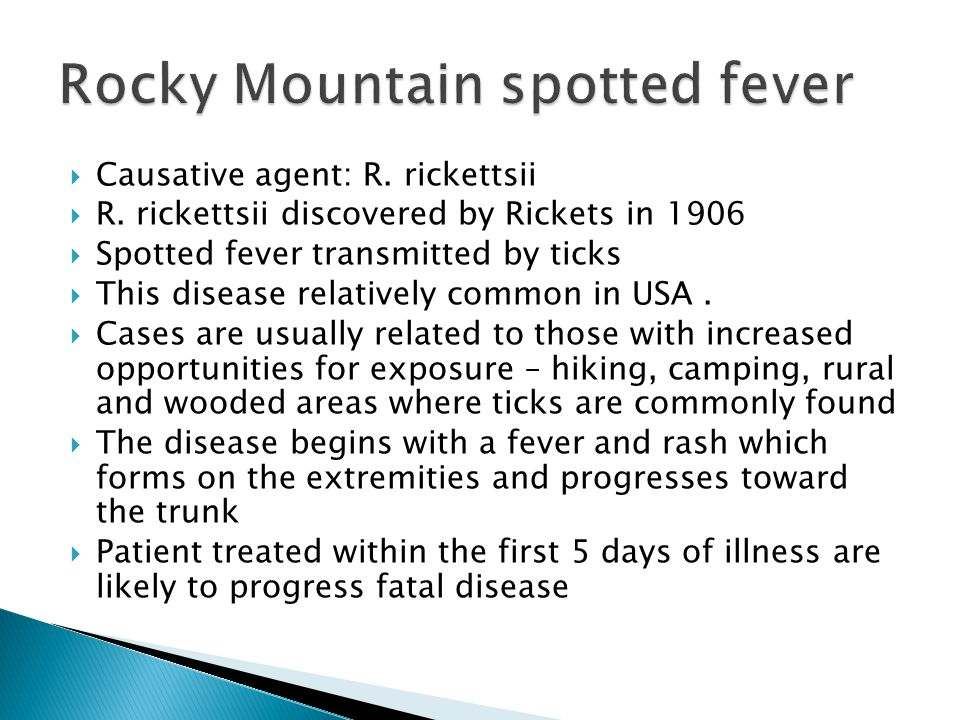 essay on rocky mountain spotted fever 5 things to look for in an essay writing company by mary hampton august 22, 2018  rocky mountain spotted fever– transmission, symptoms, and treatment by .