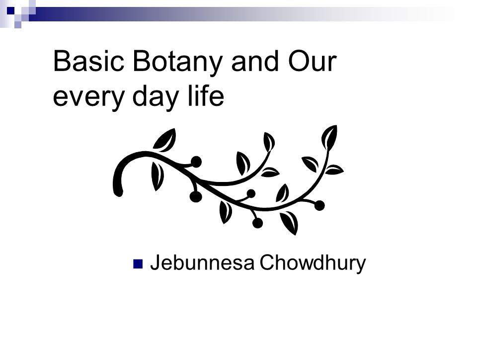 introduction to botany pdf download