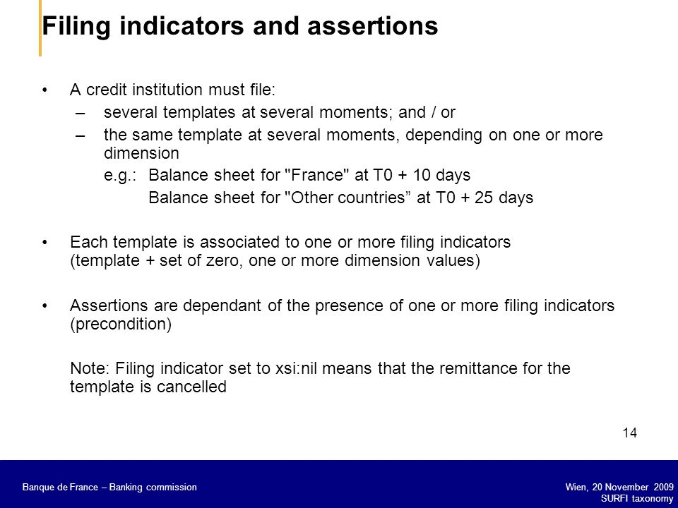 Filing indicators and assertions