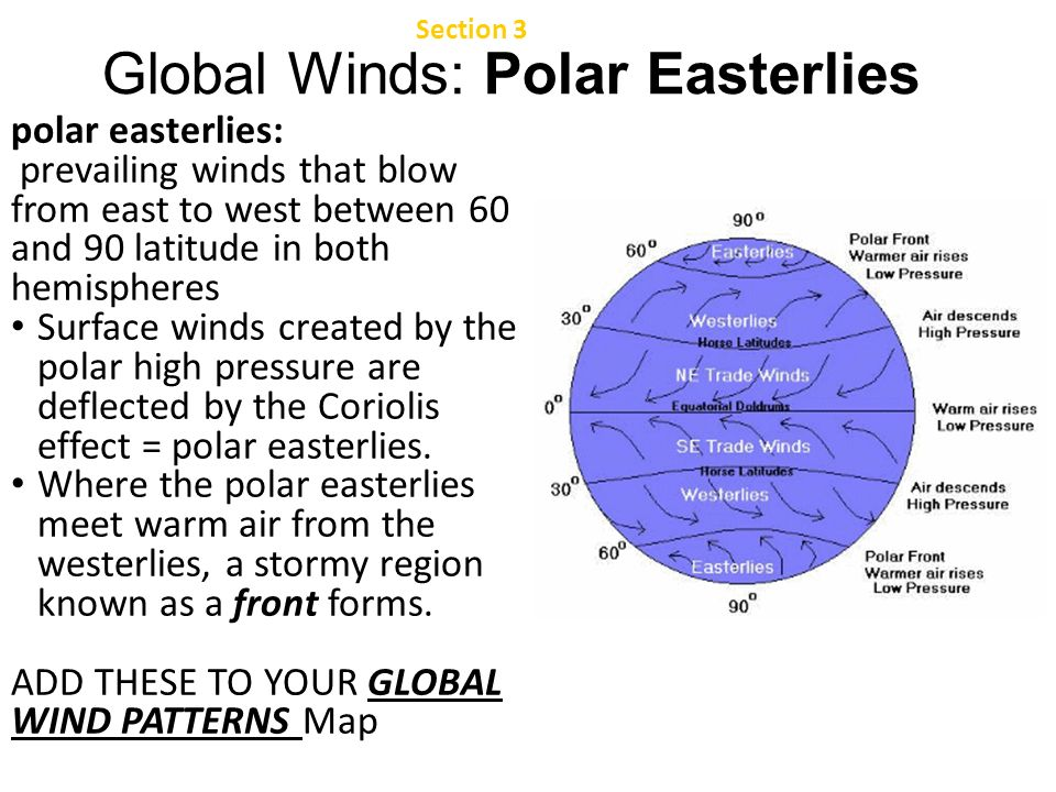 where do westerlies and polar easterlies meet