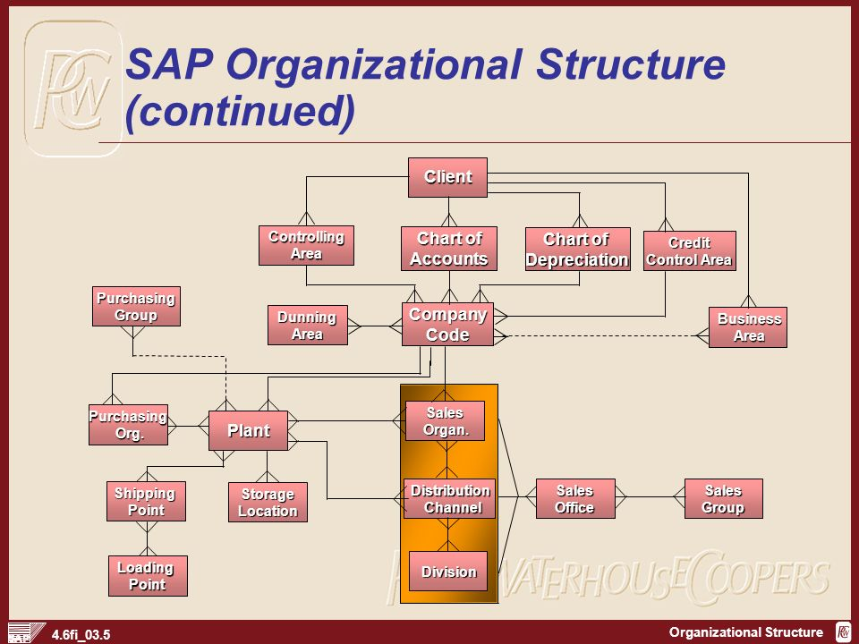 types of organisational structures used in organisations pdf