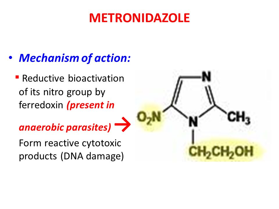 Antiprotozoal Drugs. Antiprotozoal Drugs MALARIA.