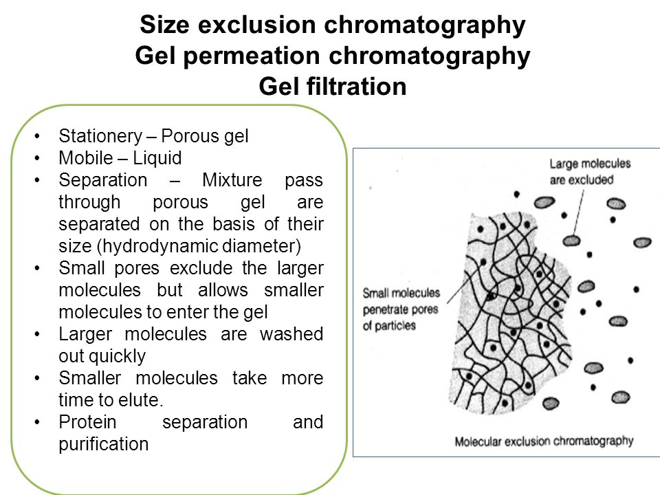 gel filtration chromatography research paper Size exclusion chromatography (sec) separates molecules based on their size  by filtration through a gel the gel consists of spherical beads.