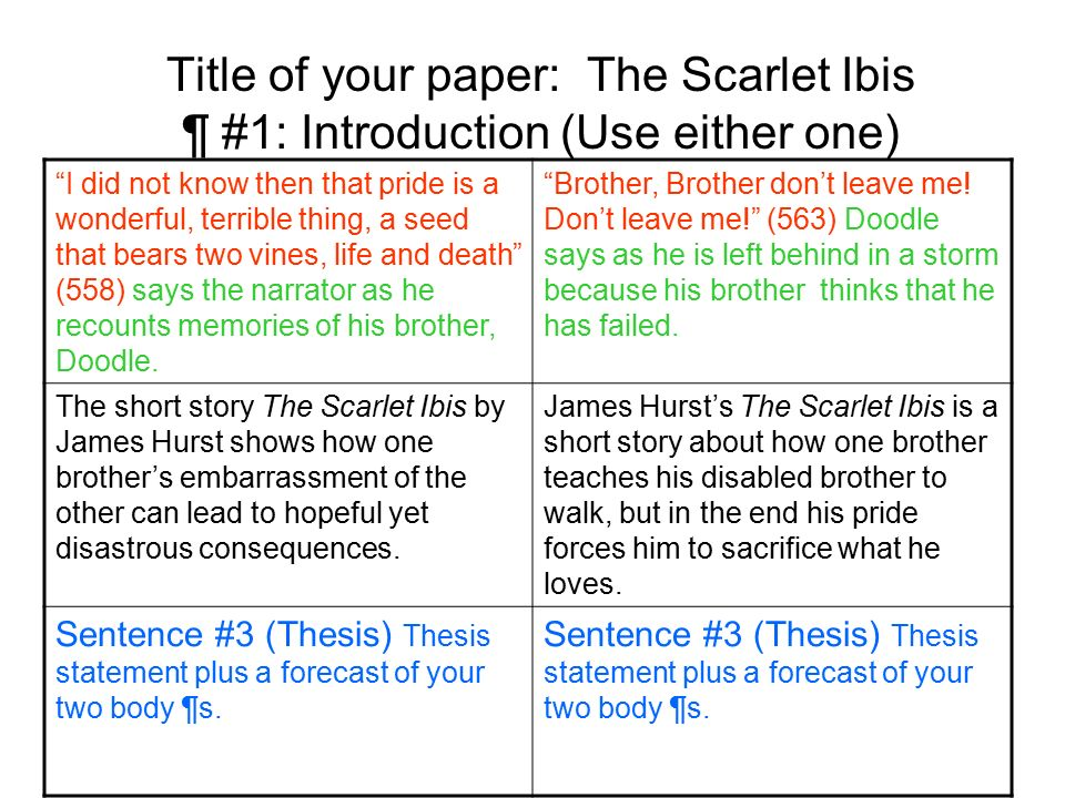 the scarlet ibis essay outline English nine homework and handouts 3rd quarter finish typing disabilities essay and type sonnet sonnet due tomorrow: friday, february 15, 2013 finish reading and annotating the scarlet ibis (linked on wednesday) none: friday, january 11.