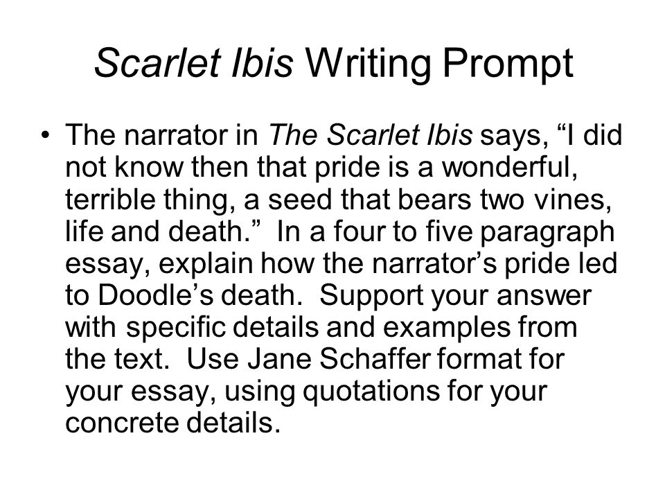 """the scarlet ibis essay prompts """"the scarlet ibis"""", a short story by james hurst, demonstrates how selfishness and greed can be used for the betterment of others as shown in this short story, doodle's brother's perseverance comes only from selfishness, greed and pride."""