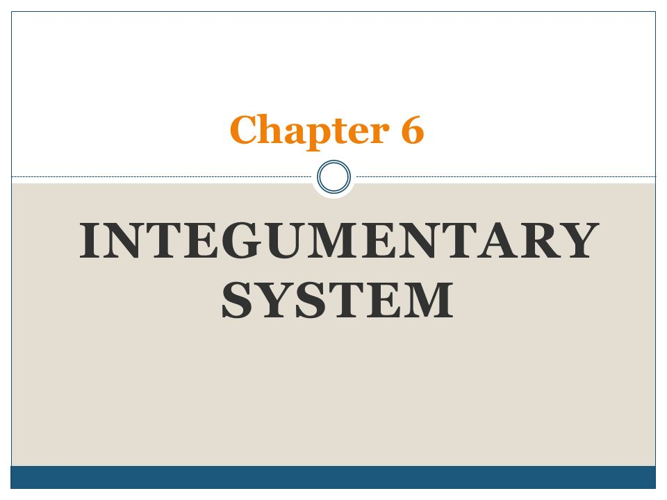 chapter 6 skin and the integumentary Chapter 6 skin and the integumentary system skin cells layers of skin  epidermis chapter 6 skin and the integumentary system composed of several  tissues.