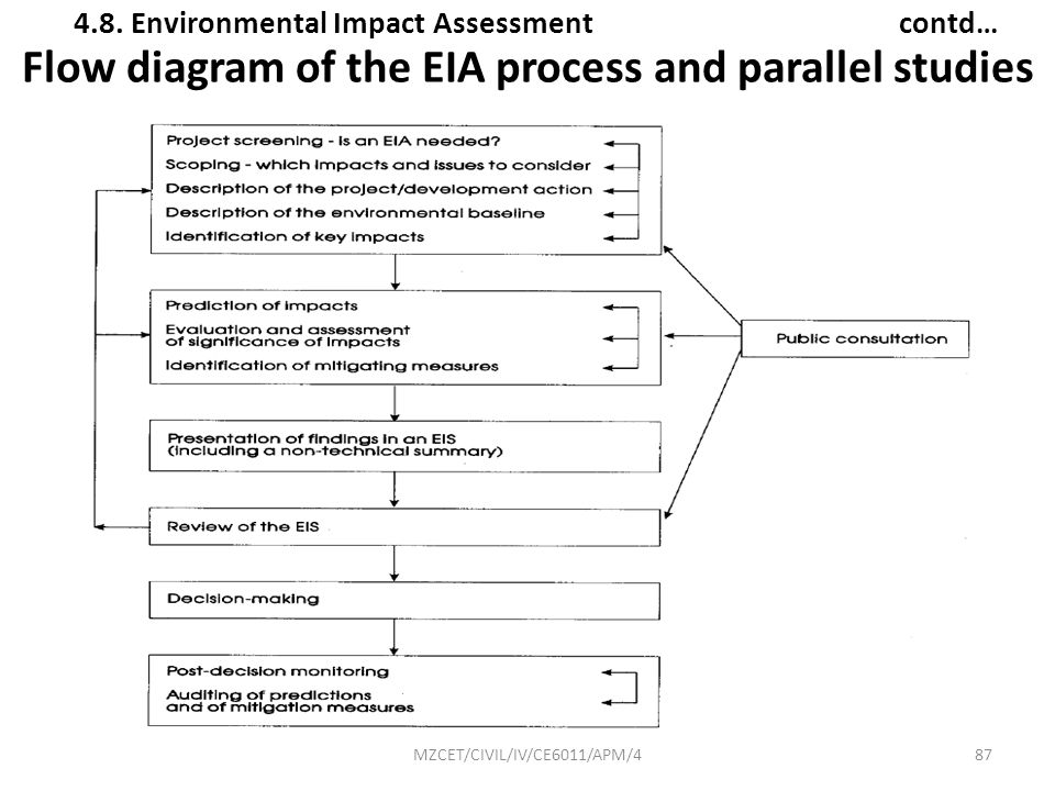 Flow diagram of the EIA process and parallel studies
