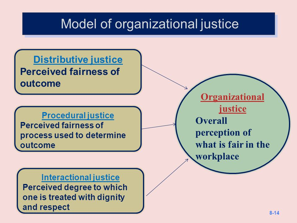 Organizational justice research paper