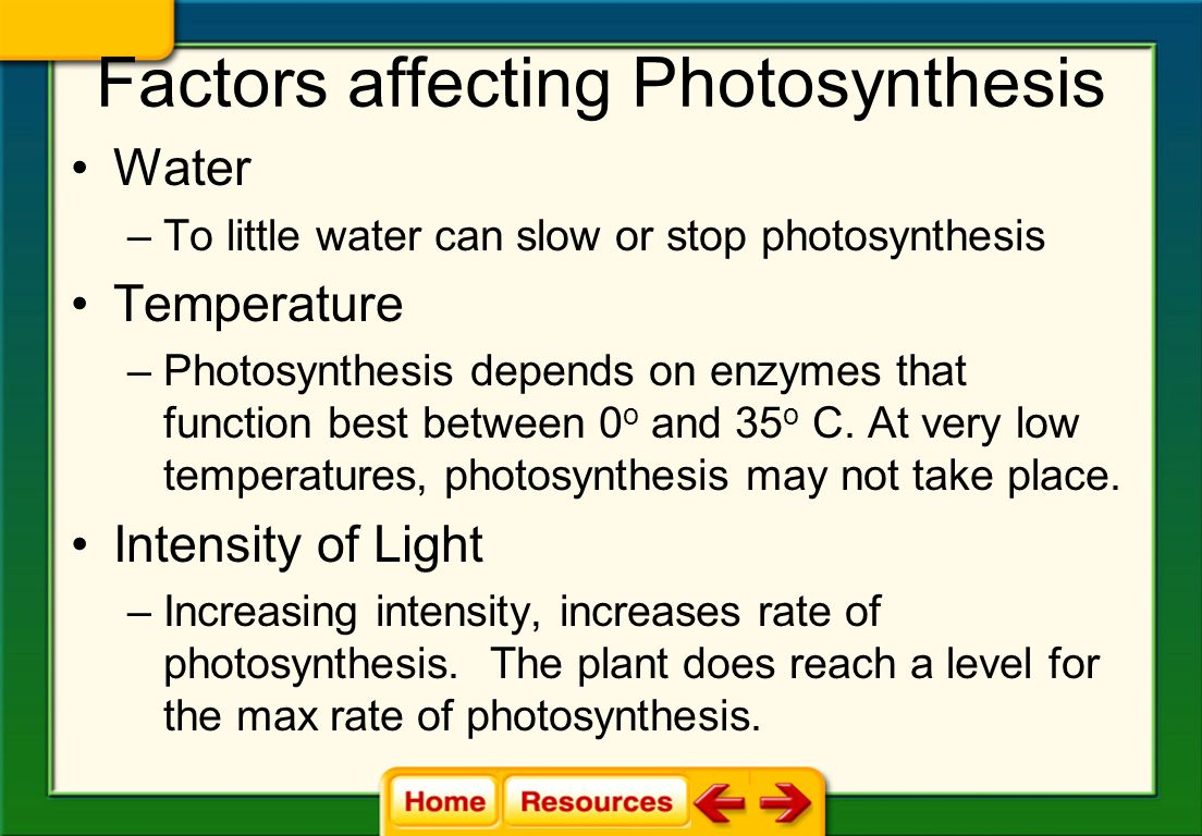 what are some factors that affect photosynthesis