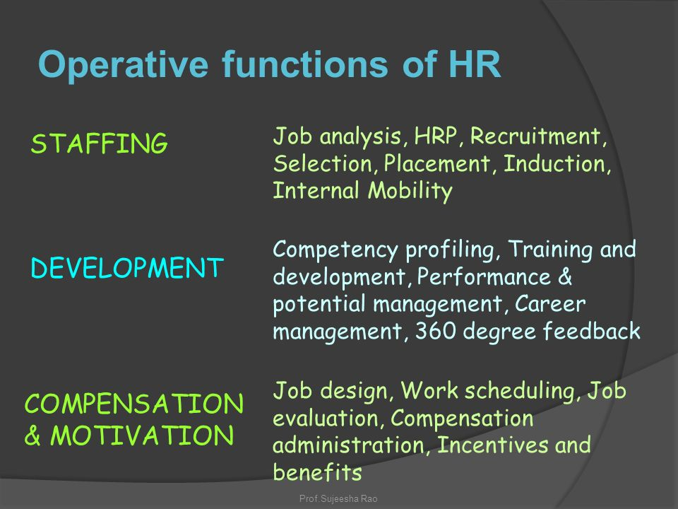 operative functions of hrm pdf