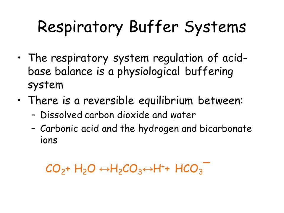 The Respiratory System and Acid-Base Balance