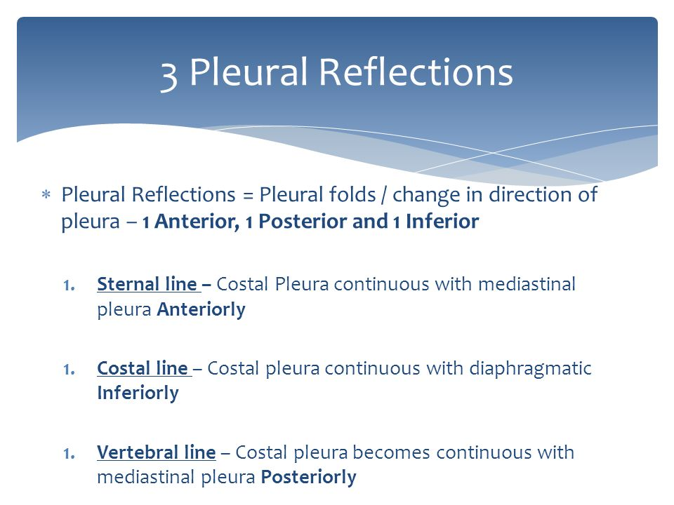 surface anatomy of thorax, lungs and breast - ppt video online, Human Body