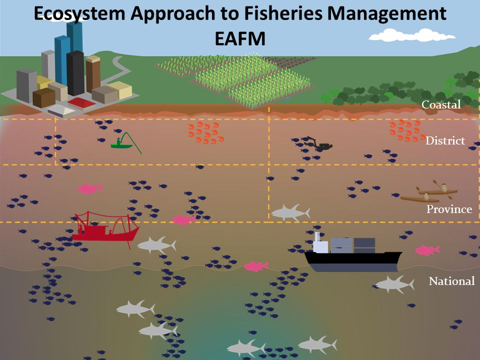 Sea Project Situational Model Development Ppt Video