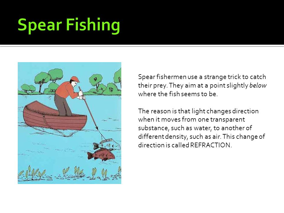 how to spear fish above water