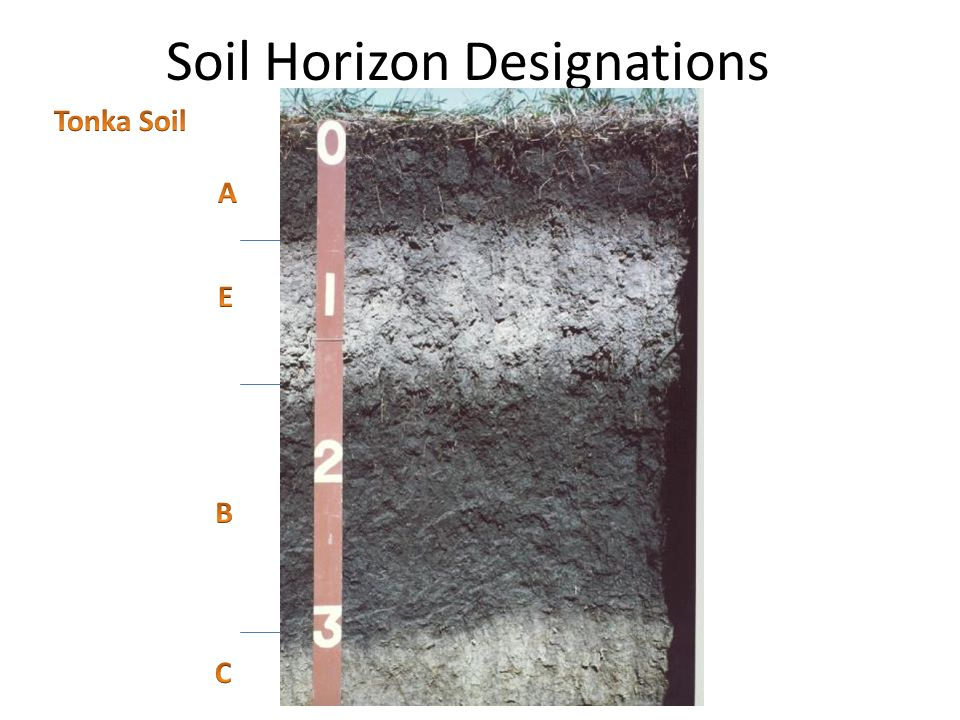 Mlra soil survey leader ppt video online download for Soil horizons
