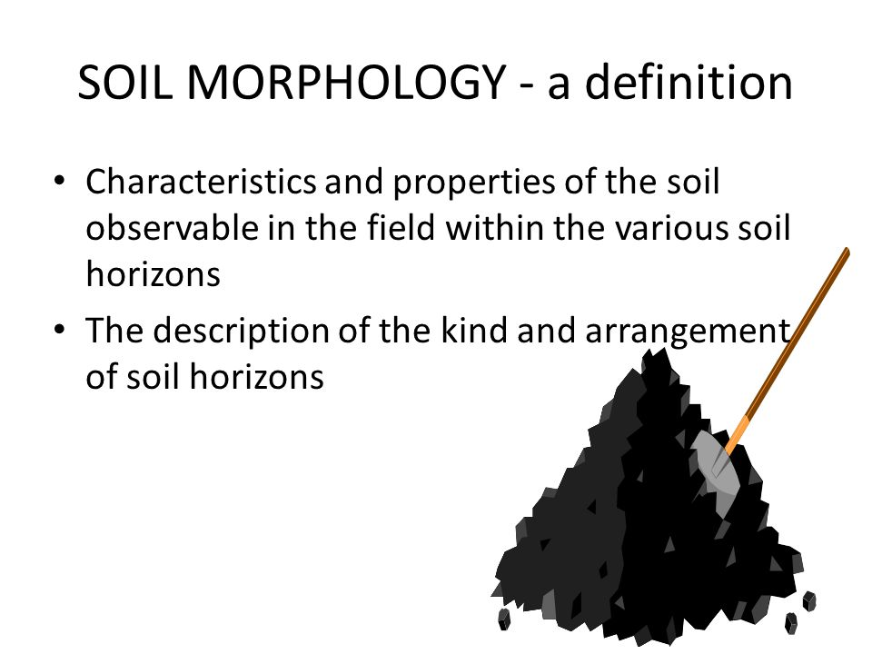 Mlra soil survey leader ppt video online download for Meaning of soil formation