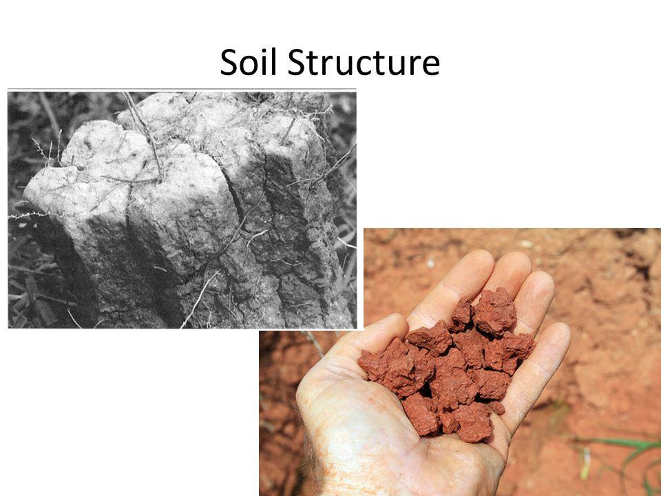 Mlra soil survey leader ppt video online download for Soil structure