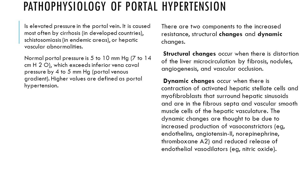 SEMINAR No 8. Portal hypertension - ppt video online download