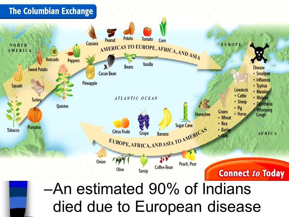 columbian exchange the spanish in america America's resources are the reason for the success that europe had from the columbian exchange studied by historian alfred crosby, this was a process in which the animals, plants, and bacteria life mixed in the new worlds.