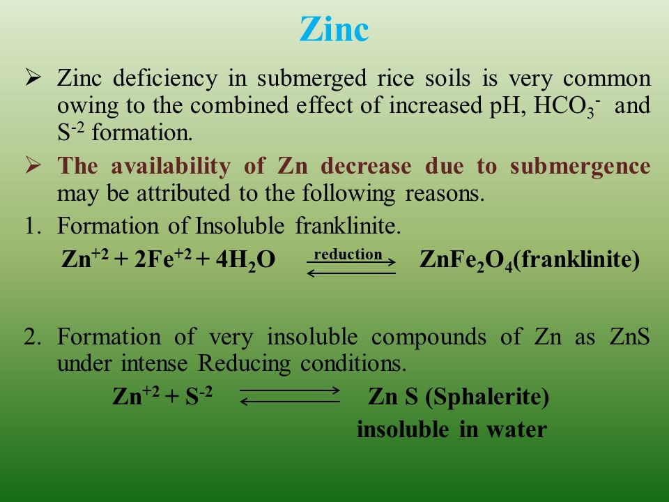 Dept of soil science agril chemistry ppt video for Soil zinc deficiency