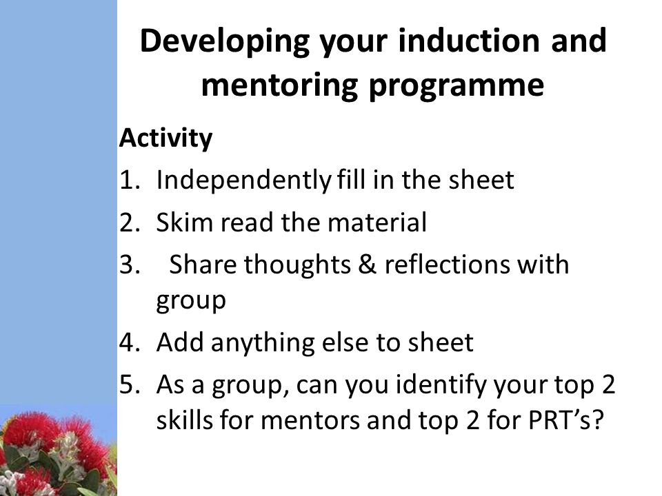 how to develop mentoring programs