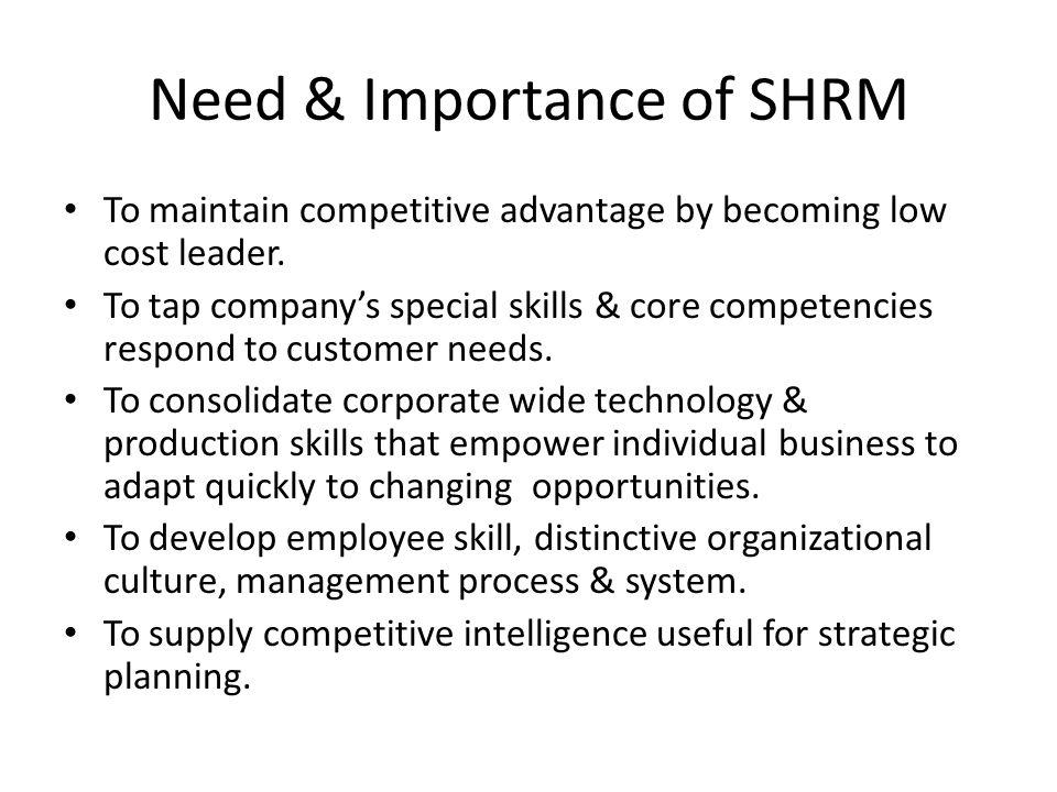 core competencies and distinctive competencies for dell company