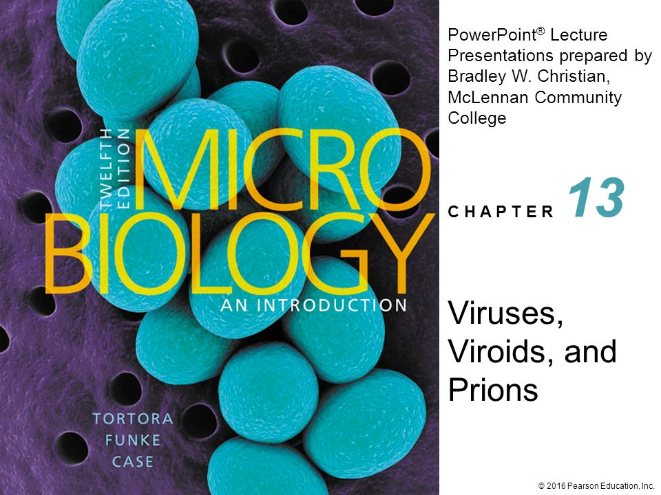 viruses viroids and prions 1 View notes - viruses viroids and prions part 1 from mic 205 at arizona state university viruses, viroids & prions virology 2 viruses: simple biomolecular particles with no metabolism, no growth,.