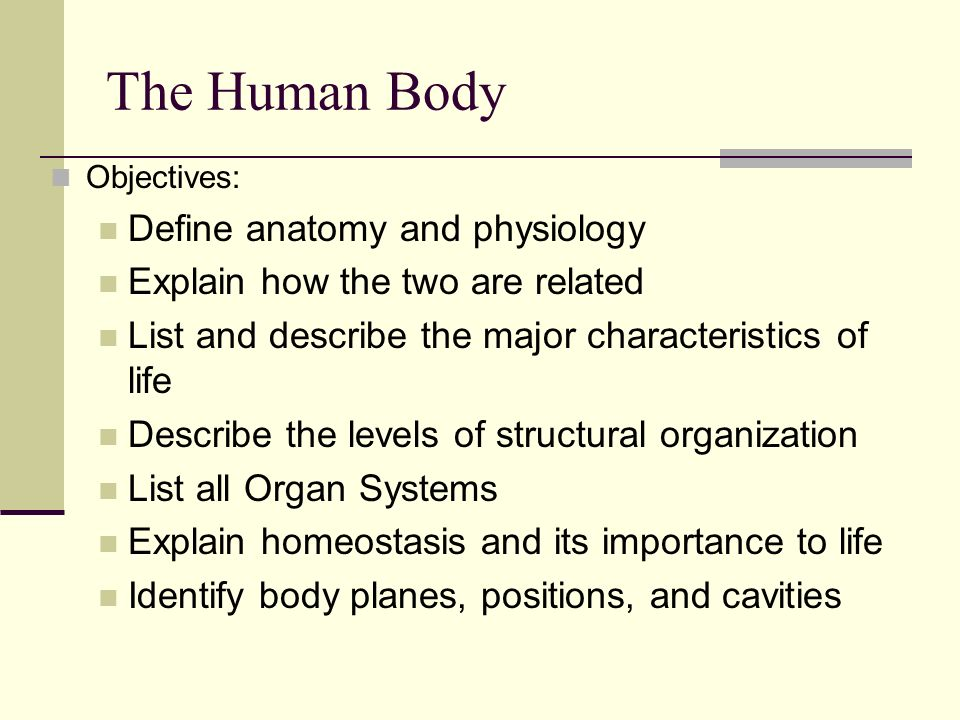Bell Ringer List all Organ Systems.. - ppt video online download
