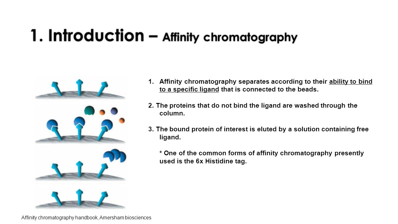 introduction to chromatography An introduction to chromatography and its pplication in research.