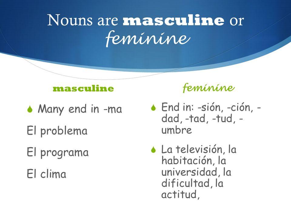 Nouns are masculine or feminine
