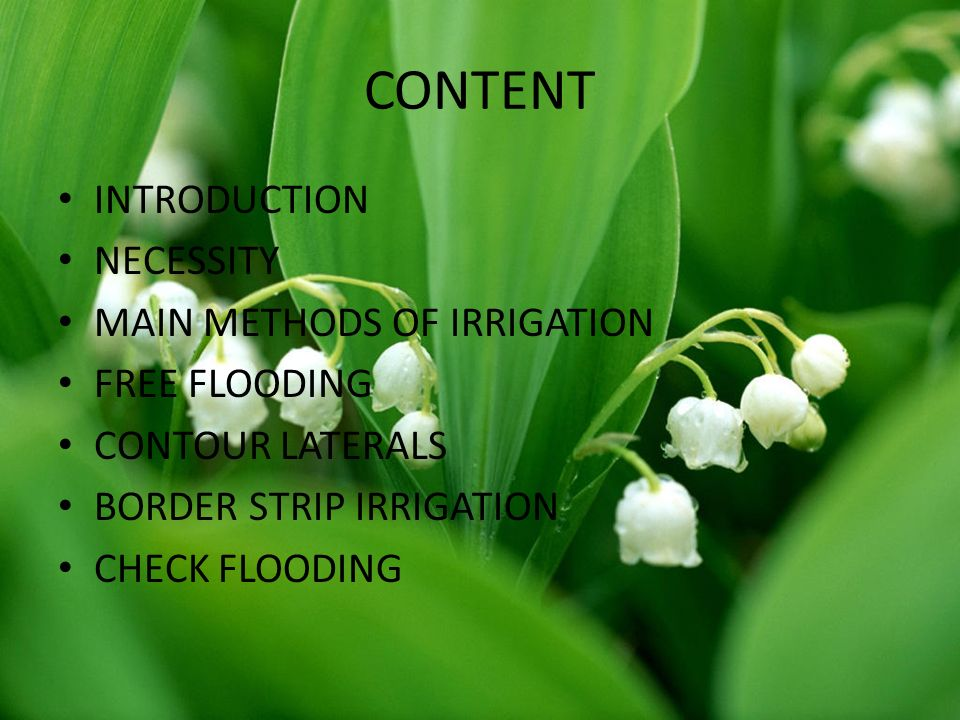 CONTENT INTRODUCTION NECESSITY MAIN METHODS OF IRRIGATION