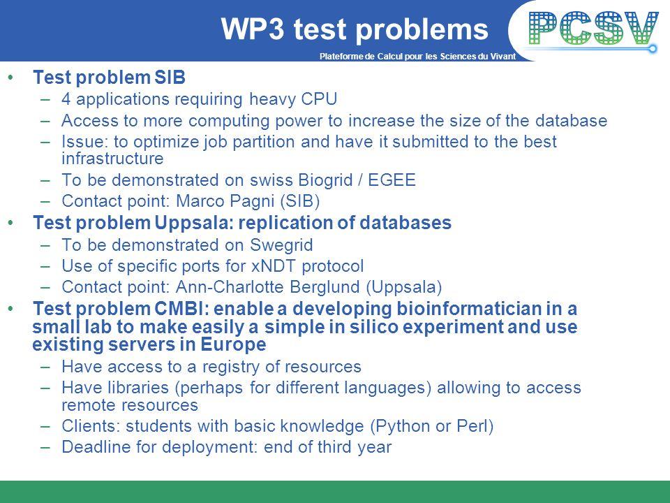 WP3 test problems Test problem SIB