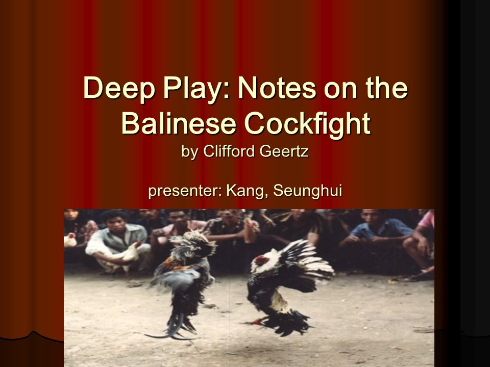 deep play notes on the balinese cockfight summary