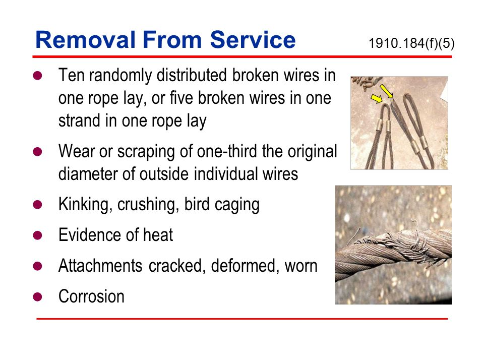 Wire Rope Birdcaging - Dolgular.com