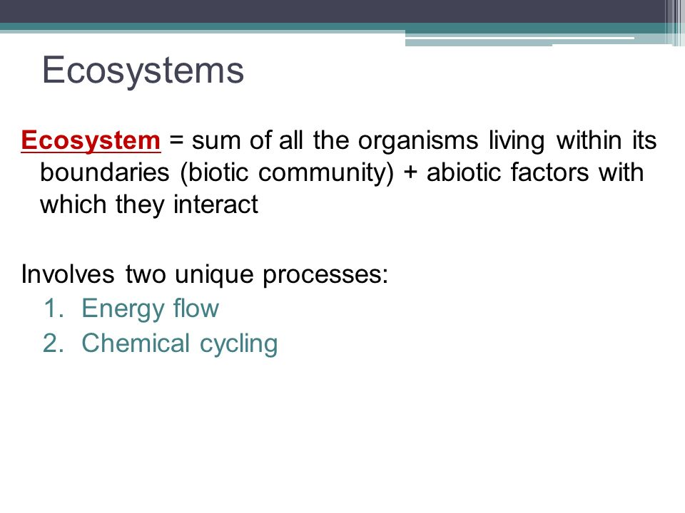 Ecosystems Ecosystem = sum of all the organisms living within its boundaries (biotic community) + abiotic factors with which they interact.