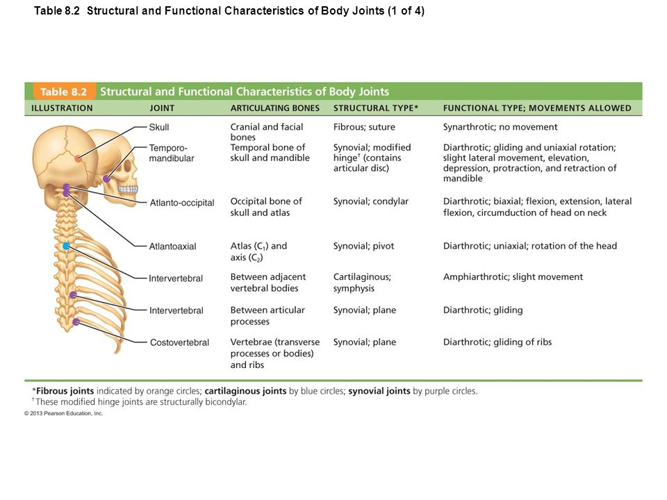 online biochemistry of cell walls and membranes