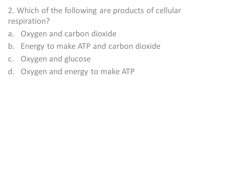 2. Which of the following are products of cellular respiration
