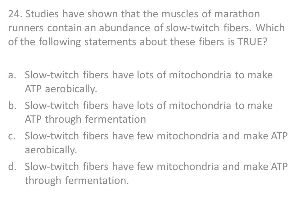 24. Studies have shown that the muscles of marathon runners contain an abundance of slow-twitch fibers. Which of the following statements about these fibers is TRUE