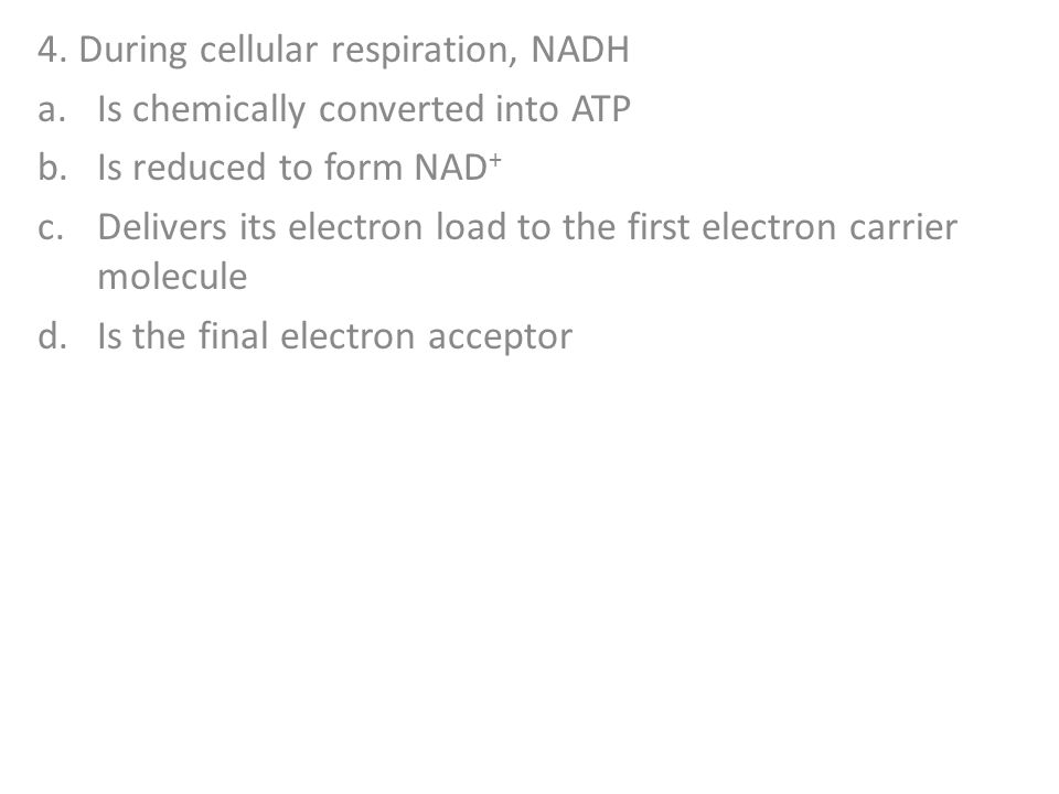 4. During cellular respiration, NADH